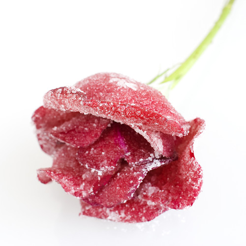 rosacristalizada