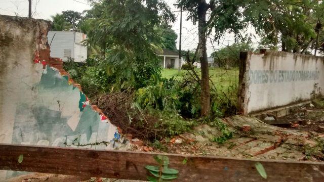 Árvore desabou e quebrou pedaço do muro da Associação dos Criadores, onde por décadas foi realizada a Expoema