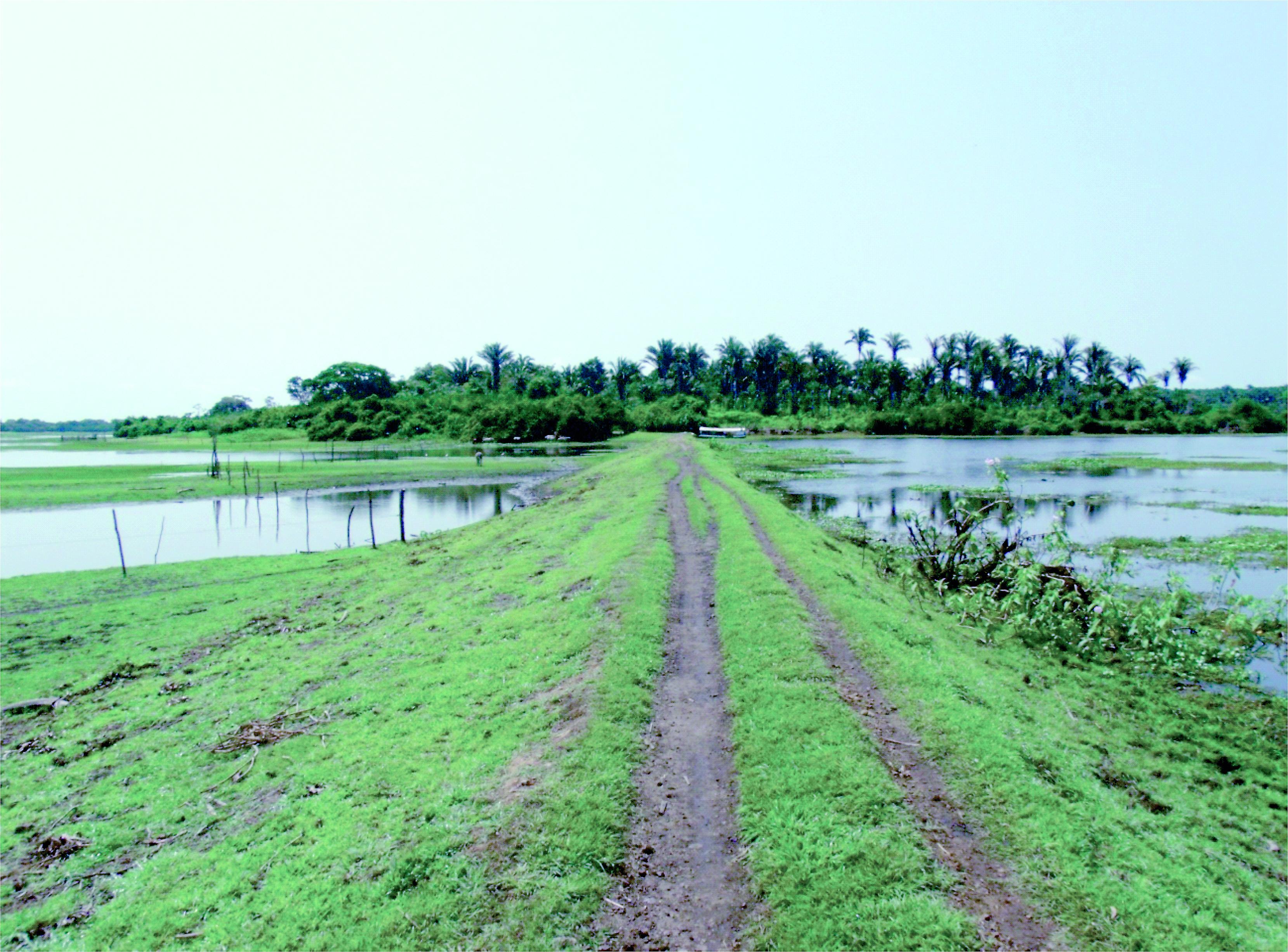 Barragem semelhante ao Sistema de Diques da Baixada