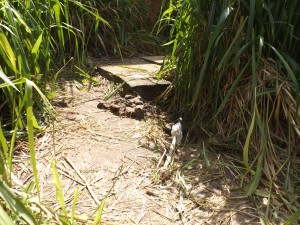 Local onde alguns moradores do Centro buscam água.