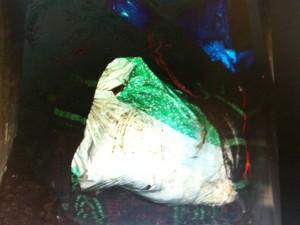 Corpo de Dahlia Ferreira esquartejado dentro de uma lixeira